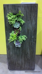 5 Feet From the Moon succulent wall hanging
