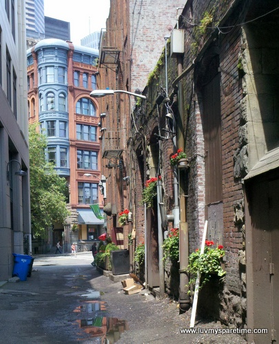 Flowering alley Seattle Pioneer Square
