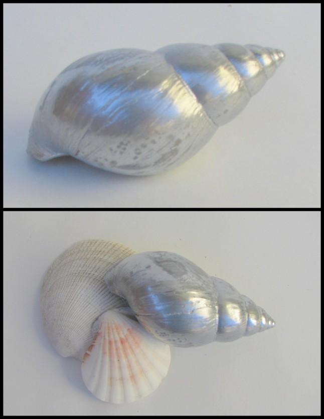 DIY silver shell
