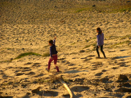 Sand Dune Pacific Coast highway