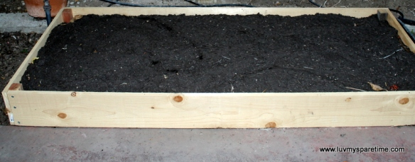 DIY filled garden box