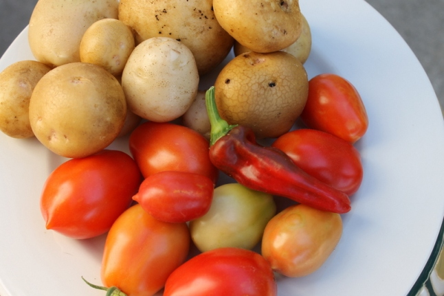 home grown Vegtables