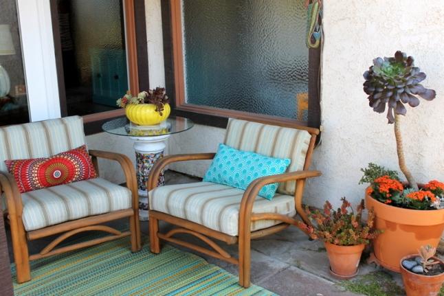 Succulent patio plants